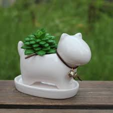 Cute Succulent Pots Compare Prices On Small Planter Pots Online Shopping Buy Low