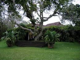 home garden design sri lanka vidpedia net vidpedia net