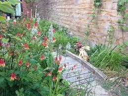 a brooklyn backyard rain garden and green roof brooklyn botanic