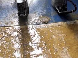 urine resistant flooring resisting urine floor system