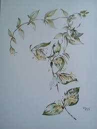 June Flower Tattoos - 82 best tattoos images on pinterest mandalas drawings and