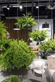 Indoor Garden Design 115 Best Plants U0026 Planting Ideas Images On Pinterest Planting