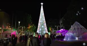 australian u0027christmas lights man u0027 david richards sets guinness