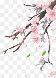 peach blossom png vectors psd and icons for free download pngtree