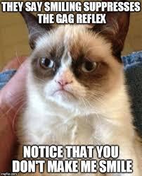 Gag Meme - grumpy cat meme imgflip