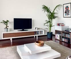 Wall Tv Stands With Shelves Minimalist Walnut Tv Stand Apartment Pinterest Walnut Tv