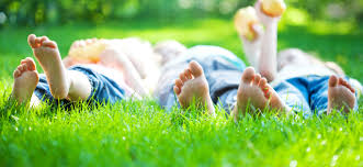 sikorski landscaping the highest quality landscaping u0026 lawn care