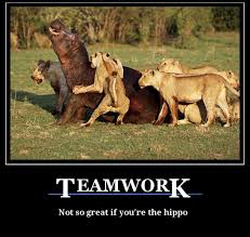 Teamwork Memes - teamwork funny fun lol memes pics images photos pictures bajiroo 7