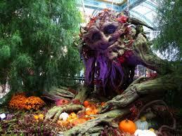 Bellagio Botanical Garden I Las Vegas Bellagio Conservatory And Botanical Gardens