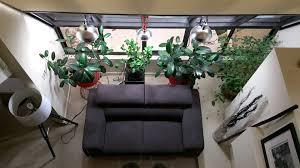 my indoor plant lighting setup youtube