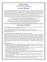 Pmo Cv Resume Sample It Program Manager Resume Sample Senior Program Manager Cv Rnei