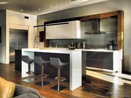 Modern Kitchen Backsplash Designs Kitchen Of The Day Contemporary Black White Kitchen Stainless