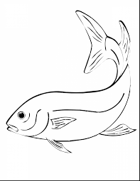 brilliant kids fishing coloring pages with fishing coloring pages
