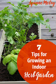 Window Sill Herb Garden by 7 Tips For Growing An Indoor Kitchen Window Herb Garden