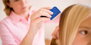 what is the best way to treat head lice