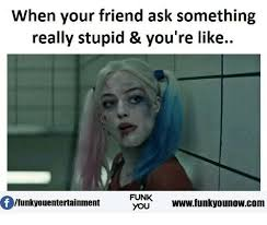 Stupid Memes - when your friend ask something really stupid you re like