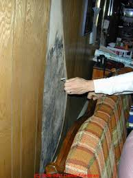 Paneling For Basement by Moldy Wall Paneling How To Find Hidden Mold Behind Paneling In