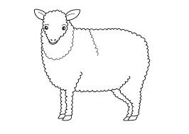 coloring pages printable sheep mask printable lamb mask template