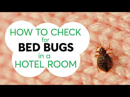 How Can I Kill Bed Bugs Three Tips To Help You Avoid Hitchhiking Bed Bugs From A Hotel Room