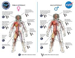 how does space affect men and women differently pbs newshour