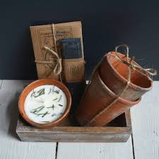 rosemary thyme and terracotta pots collection gift box by kenneth