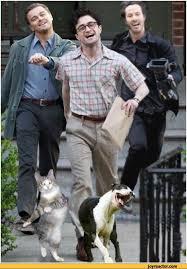 Strutting Leo Meme - strutting leo leo strut meme di caprio meme harry potter