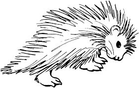 african mask coloring pages porcupine coloring pages free download clip art free clip art