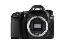 best dslr camera deals for black friday amazon com digital slrs