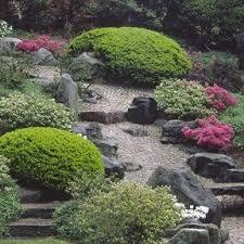 29 best garden azaleas images on pinterest beautiful gardens