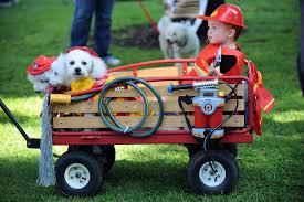 best pet friendly halloween events in orange county cbs los angeles