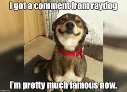 Much Dog Meme - proud dog memes imgflip