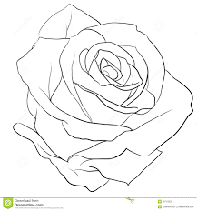 design flower rose drawing crafty design rose outline skull and crossbones flower drawing