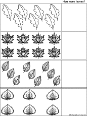count the leaves printout enchantedlearning com