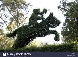 Horse Topiary Topiary At Mount Stewart County Down Mount Stewart Has Been