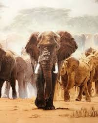 wild africa in painting by artist karen laurence rowe karen o