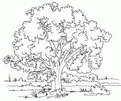 desert coloring pages kids interesting cliparts