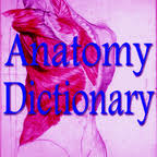 Anatomy And Physiology Dictionary Free Download Human Anatomy Dictionary Download Human Anatomy Dictionary 1 7
