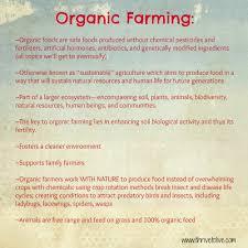 family essay sample family essay topics business law essay topics business law essay organic food essay organic food essay dnnd ip essay on organic essay on organic farming gxart