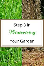 2379 best gardening images on pinterest gardening backyard