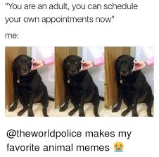 Make Meme With Own Photo - you are an adult you can schedule your own appointments now me makes