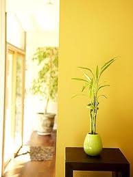 photo gallery 10 ways to feng shui your home