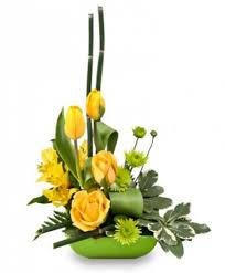 florist ocala fl uplifting lime floral design in ocala fl amazing
