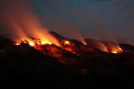 Wildfire Shot Drink by Los Angeles Declares State Of Emergency As Wildfires Cast Pall Of