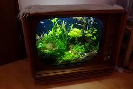 diy tv tank tv aquarium youtube