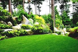 Rock Garden Landscaping Ideas Yard Landscaping Ideas For Small Gardens Budget Front Garden