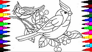 learn to color birds coloring pages videos for children learn