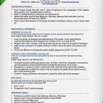 graphic design resumes examples best 25 graphic designer resume