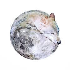 lone wolf by nickybarkla deviantart com on deviantart and