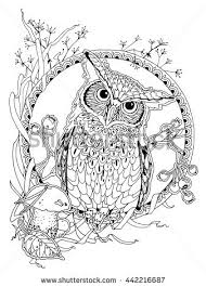 coloring page for adults owl coloring page adults owl forest elements stock vector hd royalty
