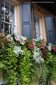 Window Sill Planter by 86 Best Garden Images On Pinterest Window Boxes Gardening And